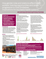 Poster on Zimbabwe, human resources and gender